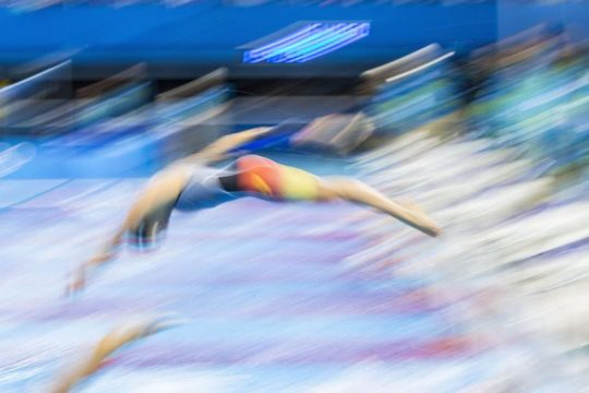 generic women swimmers dive